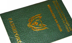 Passport Niger